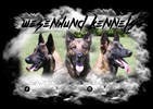 WESENHUND WORKING DOGS